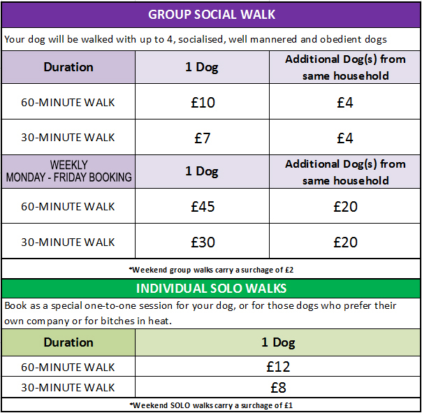 What To Charge For Dog Walking